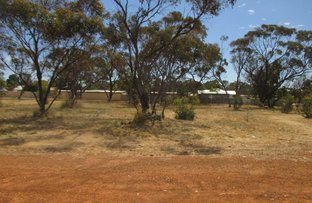 Picture of 75 Rogers ave, Katanning WA 6317