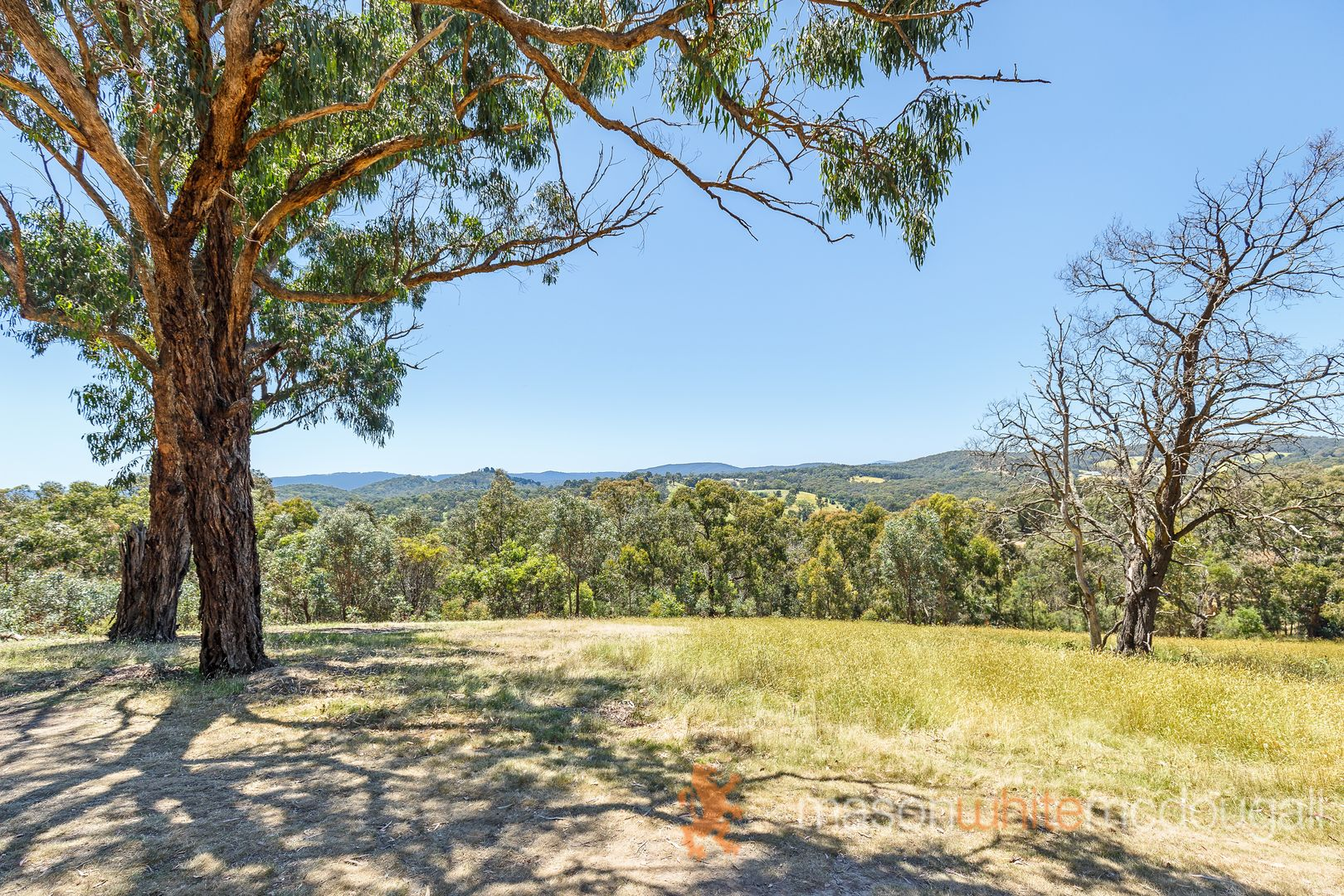 20 One Tree Hill Road, Smiths Gully VIC 3760, Image 2