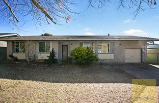 Picture of 19 Dorothy Avenue, Armidale NSW 2350