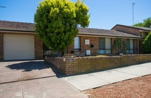 Picture of 221 Hector Street, Tuart Hill WA 6060
