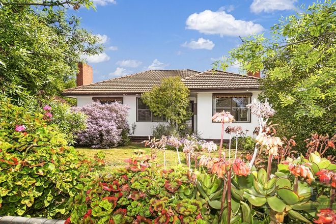 Picture of 5 Pascoe Street, ECHUCA VIC 3564