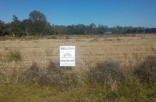 LOT 22 NORTH FORBES RD, Condobolin NSW 2877