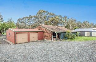 Picture of 16A Karwin Road, Medowie NSW 2318