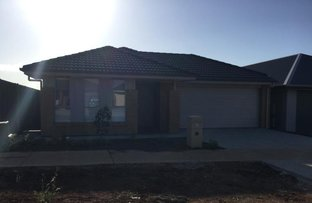 Picture of 63 Park Terrace, Blakeview SA 5114