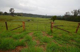 326 Skyring Creek Road, Belli Park QLD 4562
