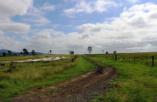 Picture of Prenzler Rd, Silverdale QLD 4307