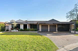 Picture of 4 Bindowan Place, Erskine Park NSW 2759
