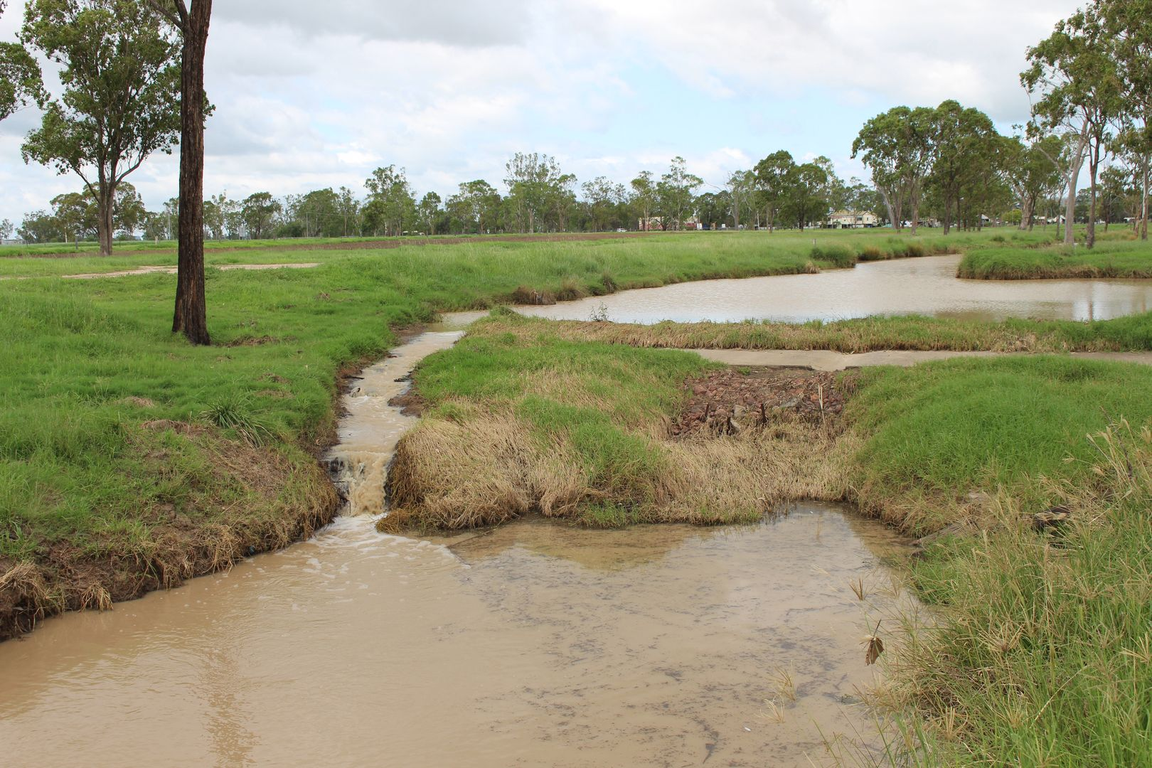 7852 Gore Highway, Millmerran QLD 4357, Image 1