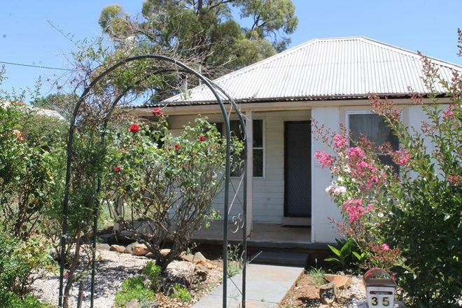 Picture of 35 Bullinda Street, DUNEDOO NSW 2844