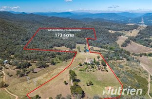 Picture of 326 Lake Buffalo-Whitfield Road, Whitfield VIC 3733