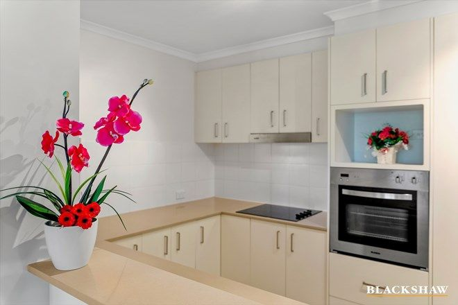 Picture of 23/21 Wiseman Street, MACQUARIE ACT 2614