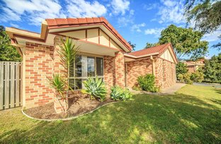 Picture of 53 Tipuana Drive, Elanora QLD 4221