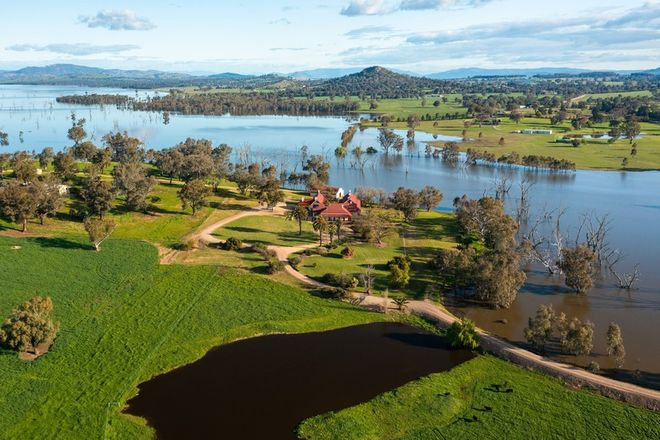 Picture of 115 Burma Road, TABLE TOP NSW 2640