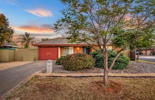 Picture of 15 Pyrus Crescent, Andrews Farm SA 5114