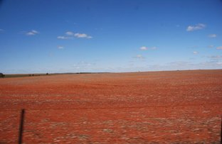 Picture of Mullewa WA 6630