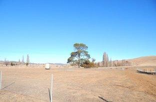 Picture of Lot 4,13 Fergus St, Bredbo NSW 2626