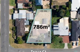 4 Tricia Court, Shelley WA 6148