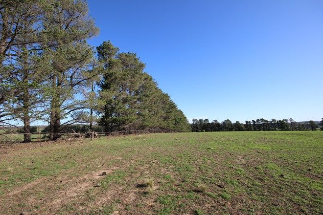 Picture of Lot 1/611 Inverary Road, PADDYS RIVER NSW 2577