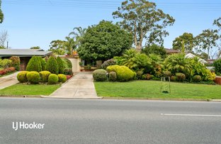 Picture of 413 Grenfell Road, Banksia Park SA 5091