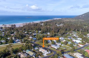 Picture of 1 Irbys Circus, Sisters Beach TAS 7321