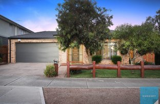 Picture of 41 Morton Boulevard, Taylors Hill VIC 3037