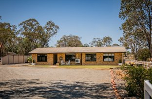 Picture of 119 Roslyn Drive, Roma QLD 4455