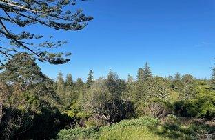 Picture of 77w6 Longridge Road, Norfolk Island NSW 2899