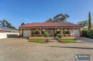 244 Barossa Valley Way, Gawler East SA 5118