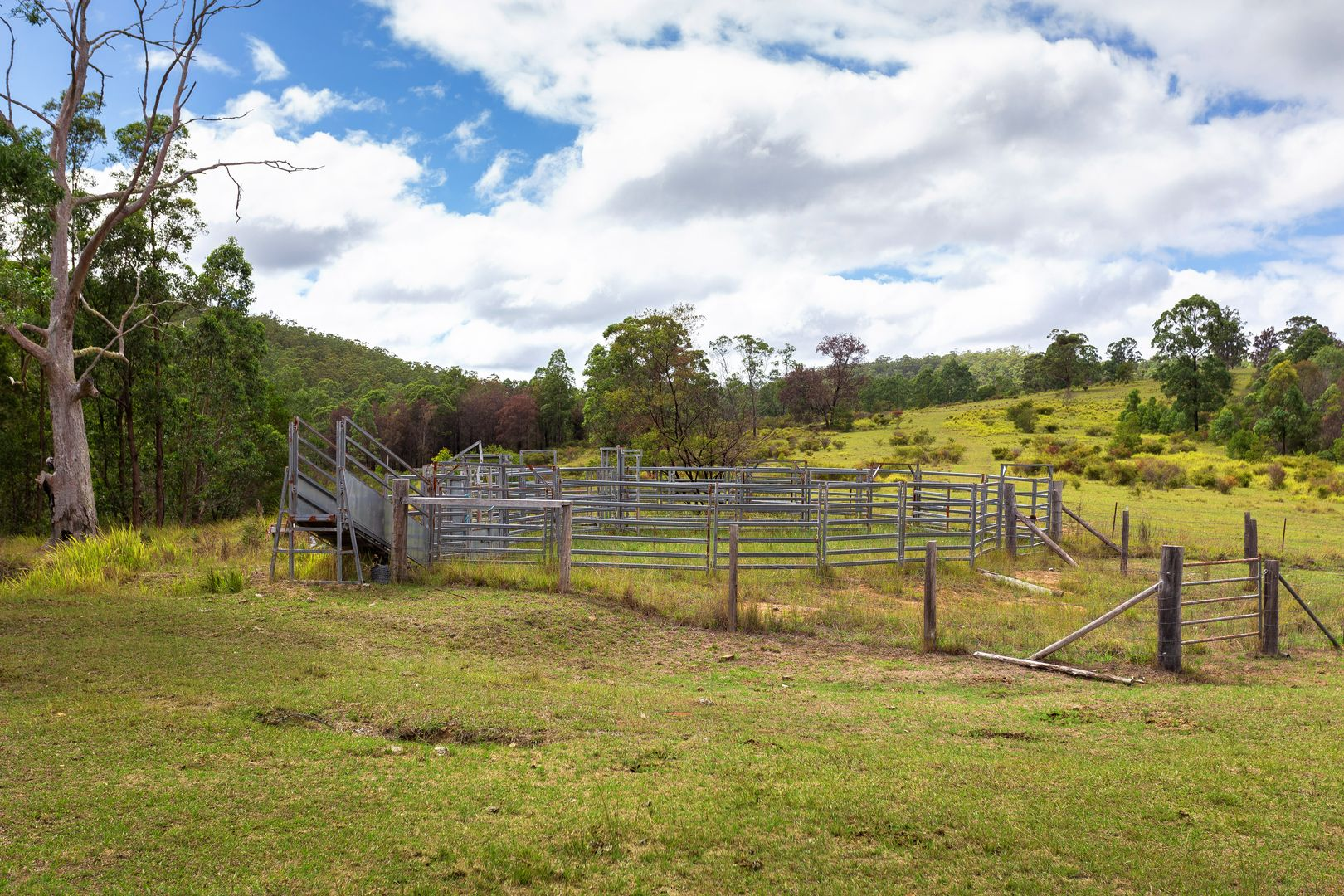626 Black Flat Lane, Mount George NSW 2424, Image 1