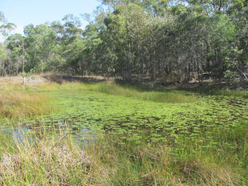 Lot 1 Coast Road, Baffle Creek QLD 4674, Image 2