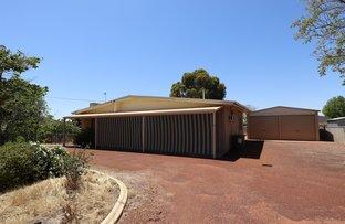 Picture of 3 Sydney Hall Way, Narrogin WA 6312