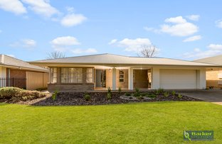 Picture of 8 Ray Beckwith Boulevard, Nuriootpa SA 5355
