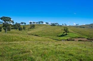 Picture of 1620 Bingleburra  Road, East Gresford NSW 2311