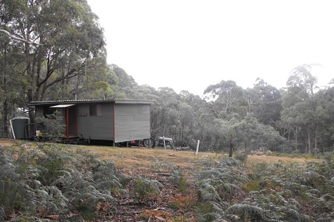 Picture of 523 Bunstons Road, TOLMIE VIC 3723