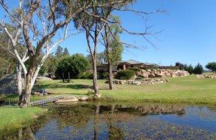 Picture of 63 Savina Lane, Severnlea QLD 4380