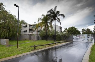 Picture of 29/1 Stallard Place, Withers WA 6230