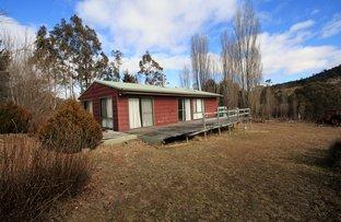 31 Narrowness Road, Nimmitabel NSW 2631