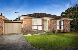 Picture of 1/41-43 Dublin Road, Ringwood East VIC 3135