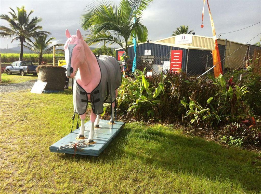 12596 Bruce Highway, Proserpine QLD 4800, Image 0