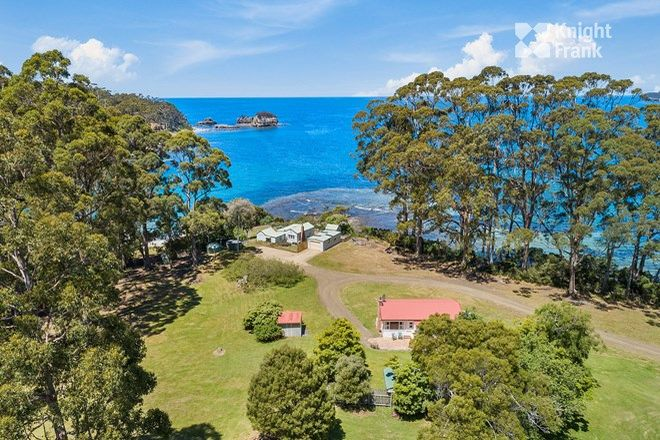 Picture of 341 & 345 Pirates Bay Drive, EAGLEHAWK NECK TAS 7179