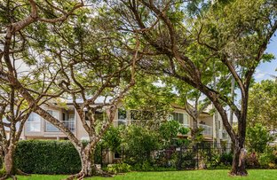 Picture of 2/1 Ure Court, Buderim QLD 4556