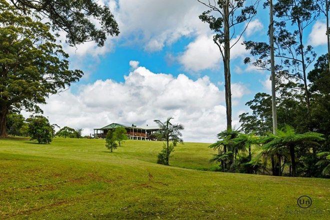 Picture of 1653 Eastern Dorrigo Way, ULONG NSW 2450