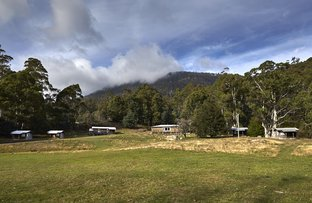 Picture of 307 Gulf Road, Liffey TAS 7301