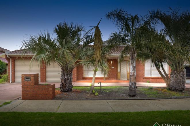 Picture of 36 Prince Albert Crescent, TAYLORS LAKES VIC 3038