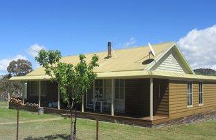 Picture of 603 STEWARTFIELD ROAD, Adaminaby NSW 2629