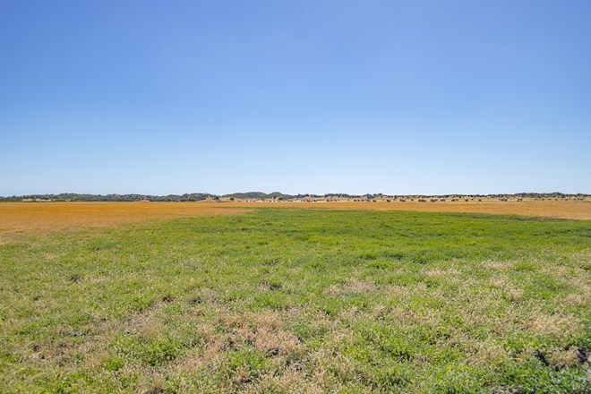 Picture of Lot 82 Edwards Road, STIRLING ESTATE WA 6271