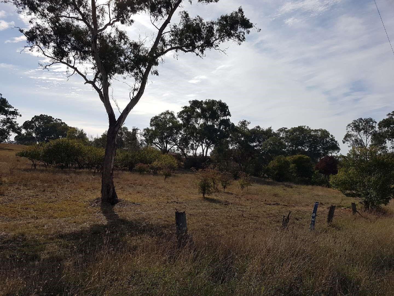39 Queen Street, Molong NSW 2866, Image 1