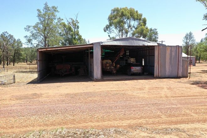 Picture of BINYA NSW 2665