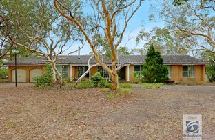 Picture of 18 Muraban Road, Dural NSW 2158