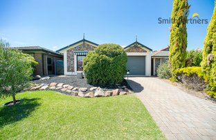 Picture of 19 Hillcott Avenue, Wynn Vale SA 5127